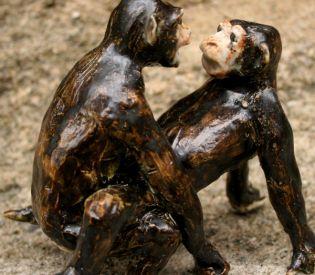 Bonobos0001