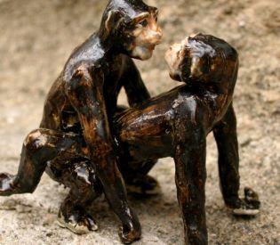 Bonobos0002