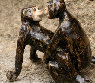 Bonobos0003